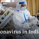 India supasses 5 million coronavirus circumstances | Coronavirus Replace