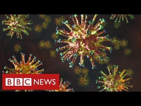 "New mutated coronavirus from South Africa is ""extremely regarding"" – BBC Information"