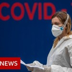 Coronavirus: WHO warns Europe over 'very critical' Covid surge – BBC Information