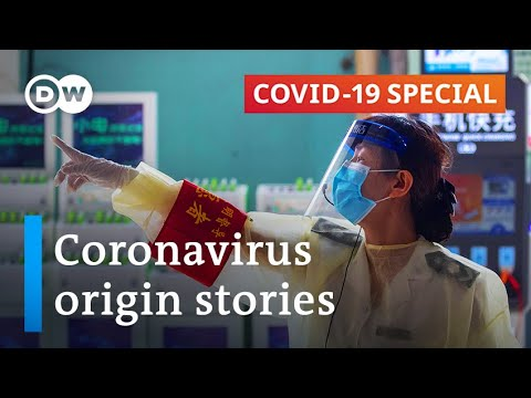 The place did the coronavirus come from? | COVID-19 Particular