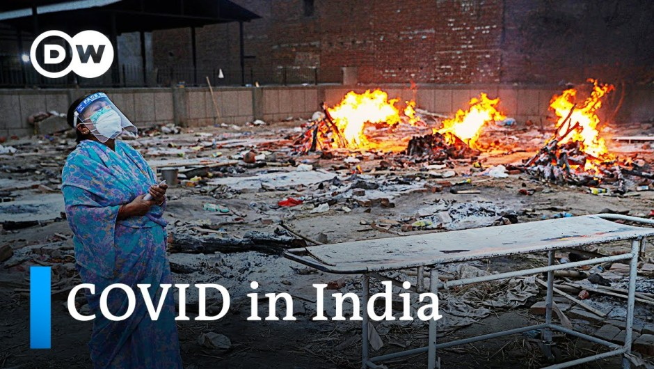 India data one other document excessive in each day COVID deaths and infections   DW Information