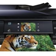 Epson xp-800 | xp series | all-in-ones | printers | support | epson us.