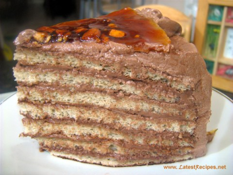 slice_of_cake_dobos_torte