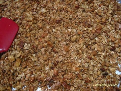 granola_oatmeal_honey_nut2