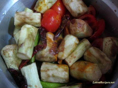 hot_and-_spicy_eggplant_dish_2