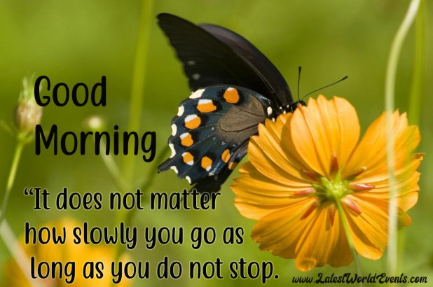 Inspirational Good Morning Quotes Good Morning Sayings