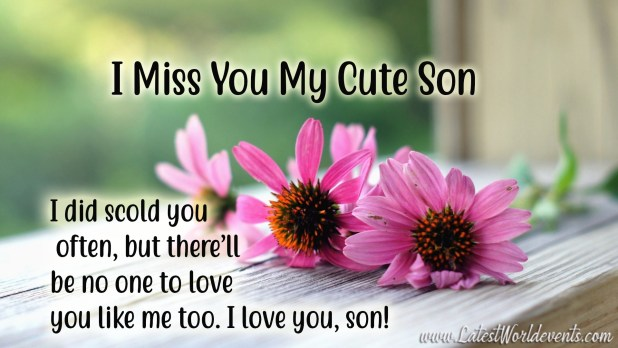 I Miss My Son So Much Quotes Missing My Son Sayings