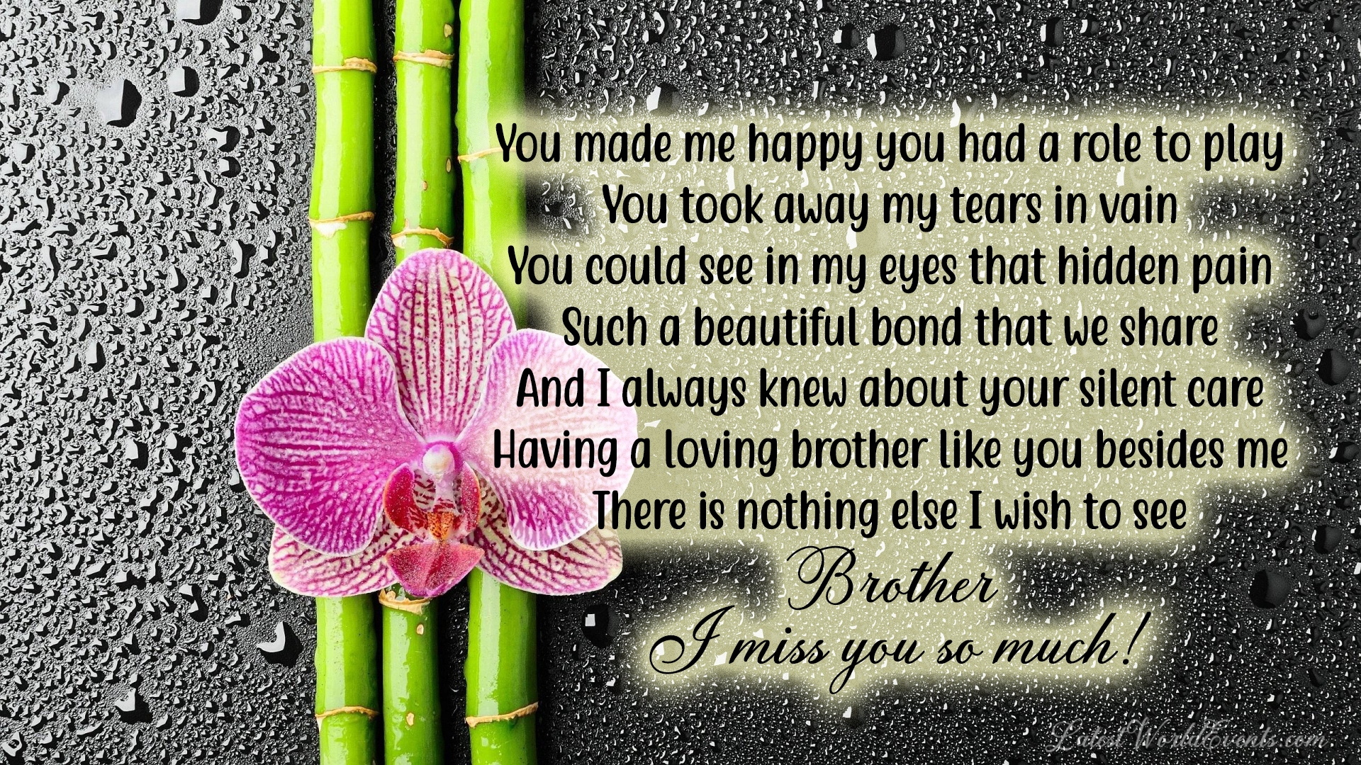 Miss you brother quotes from sister & Miss you brother status