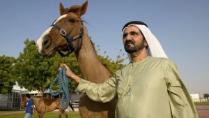 Horseracing body urged to review sheikh's status