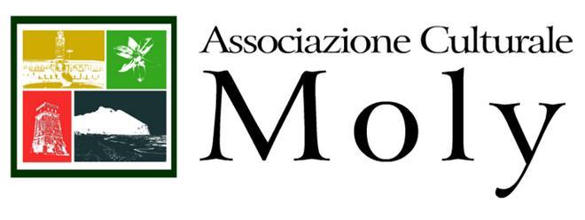 associazione-moly-latina-24ore