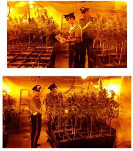 laboratorio-droga-itri