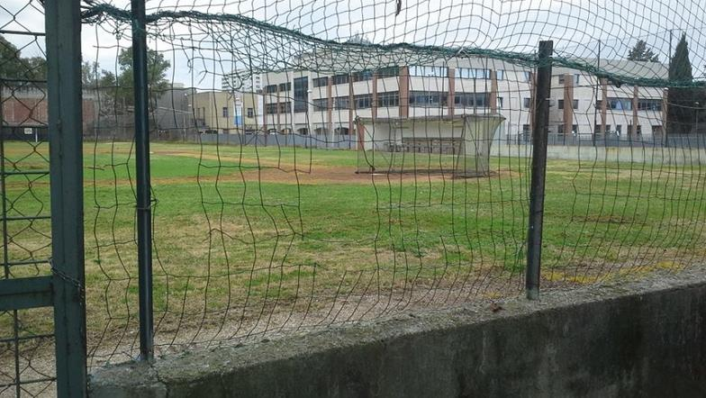 campo-baseball-latina-3