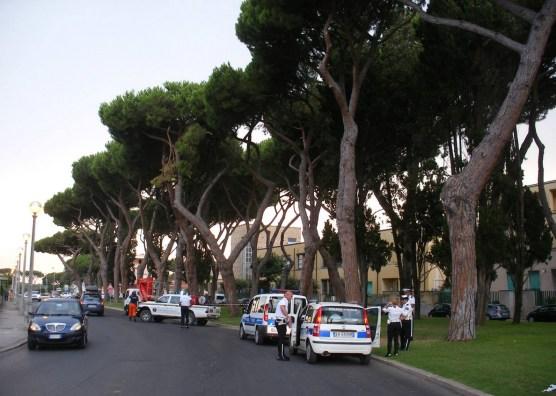 sabaudia-albero-pericolante