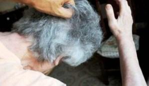 botte-violenza-anziana