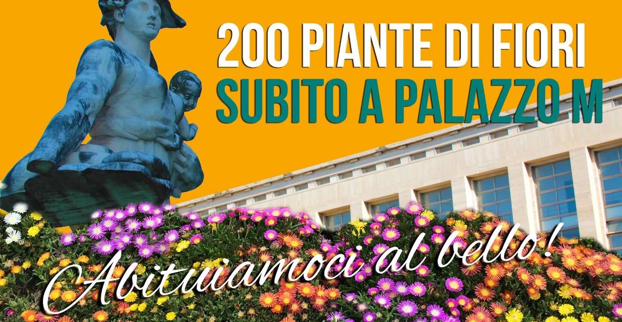 fiori-palazzo-m-latina