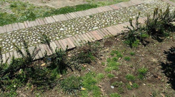 degrado-piazza-popolo-piante-latina-1