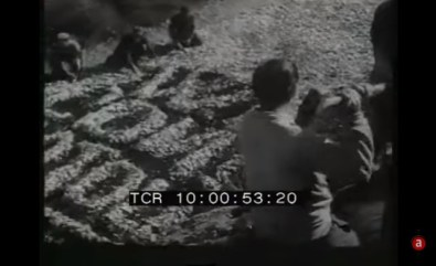 sonnino-sciopero-rovescio-1951-5