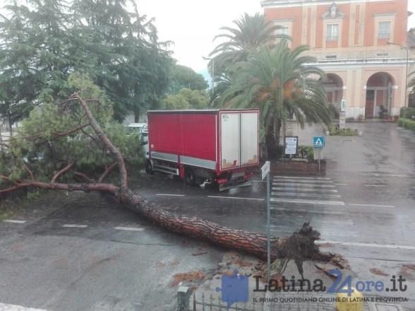 tortreponti-latina-albero-caduto