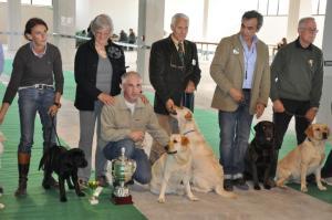 concorso-bellezza-cani-latina-26