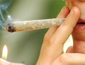 hashish_spinello_canna_marijuana