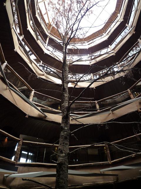 Hotel Baobab, Chilean Patagonia