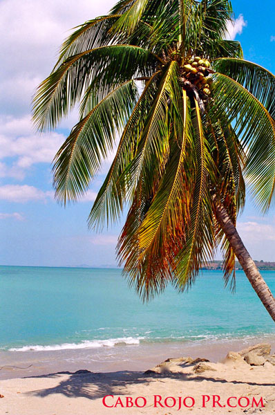 Cabo Rojo beaches, Joyuda