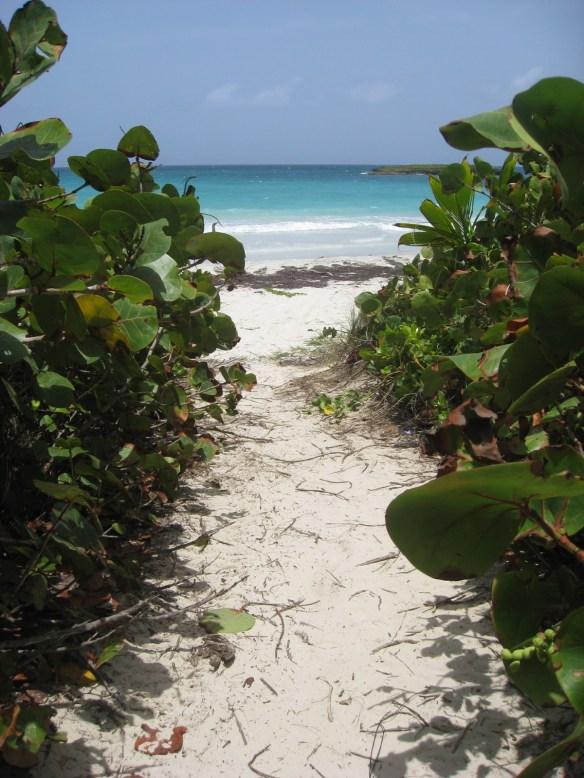 Playuela Vieques Best Beaches