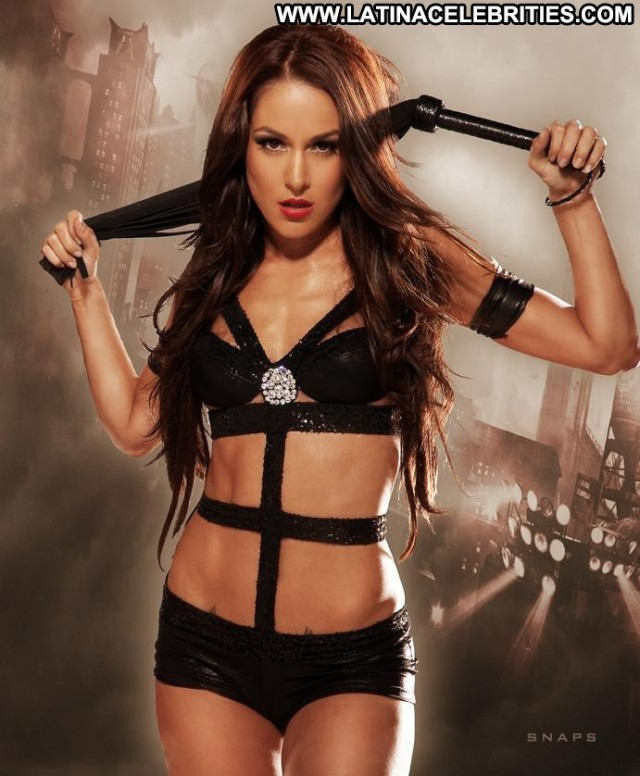The Bella Twins Wwe Divas Athletic Celebrity Brunette Beautiful Small