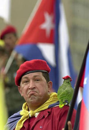 "The image ""https://i0.wp.com/www.latinamericanstudies.org/venezuela/chavez-parrot.jpg"" cannot be displayed, because it contains errors."