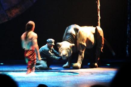 Luzia Cirque de Solie June 1, 2017 (118)