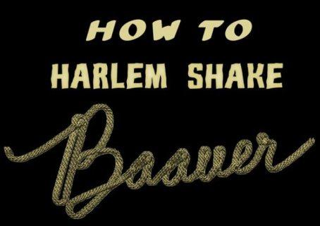 How-to-Harlem-Shake-Baauer-e1360539932811