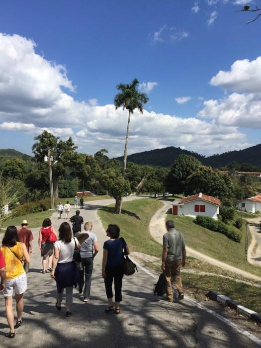 Las Terrazas (Photo by Carlos Jiménez Flores)