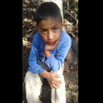 Autopsy: Dead Guatemalan Boy Had Influenza