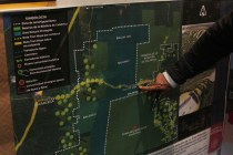 UN Mexico Rights Office Criticizes Government on Mayan Train