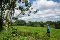 Nicaragua Refugee Farmers Carve Out Existence in Costa Rica