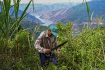 Coronavirus and the Colombian Countryside