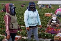 Farmworkers Are Risking Their Lives to Put Food on Your Table: What Are You Doing to Thank Them?