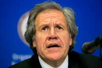 OAS Chief Under Fire for Removal of Top Rights Official
