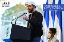 Party of El Salvador President Nayib Bukele Wins Landslide