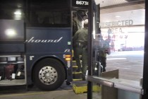 Greyhound Settles Lawsuit Over Immigration Sweeps on Buses