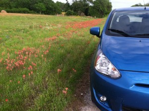 The Mirage and a field of Texas Paint Brush wildflowers.