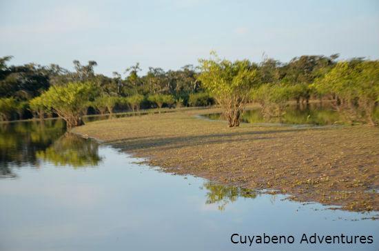 amazonia ecuador