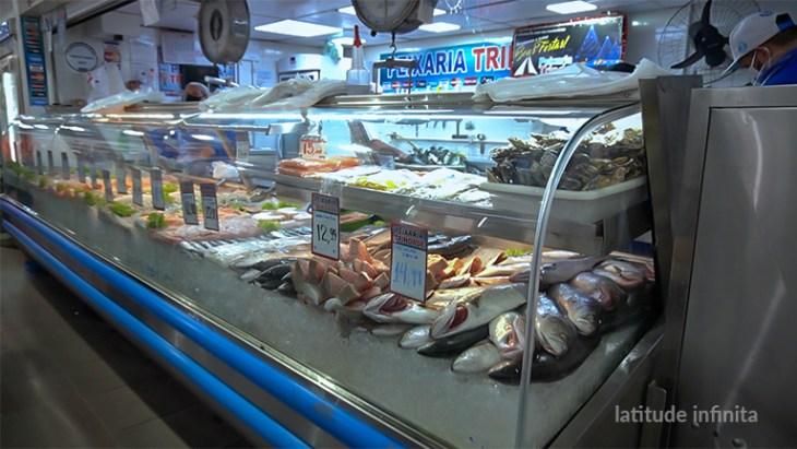 peixes mercado publico florianopolis