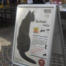 libreria del gatto