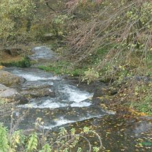 fiume Treja