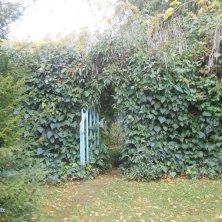 cancello al giardino Portoghesi