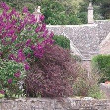 Cotswolds cottage a Bibury