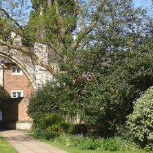 giardino dell'abbazia