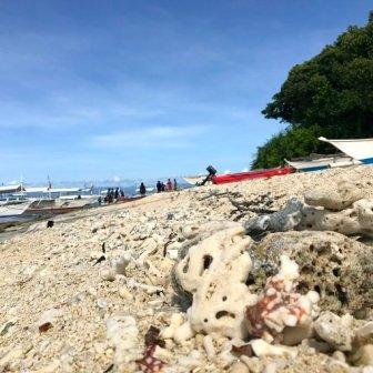 Isola di Balicasag
