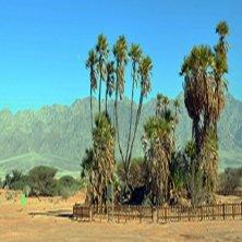 escursioni deserto